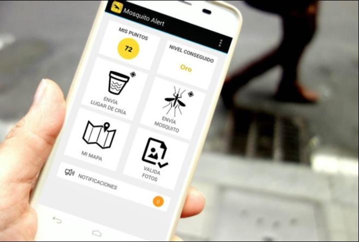 Mosquito Alert app expands through Europe